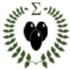 Olivenöl-Analyse 2019